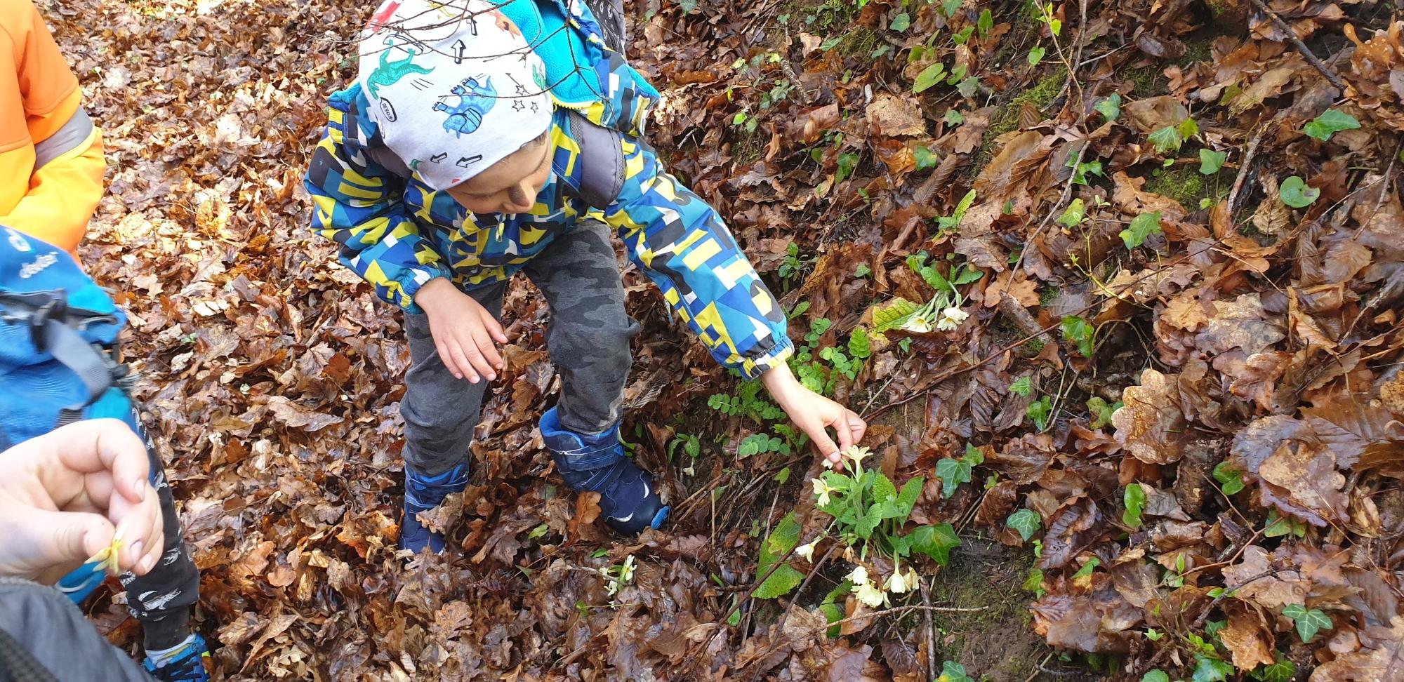 Raziskovalne počitnice so primerne za otroke, starejše od 6 let.
