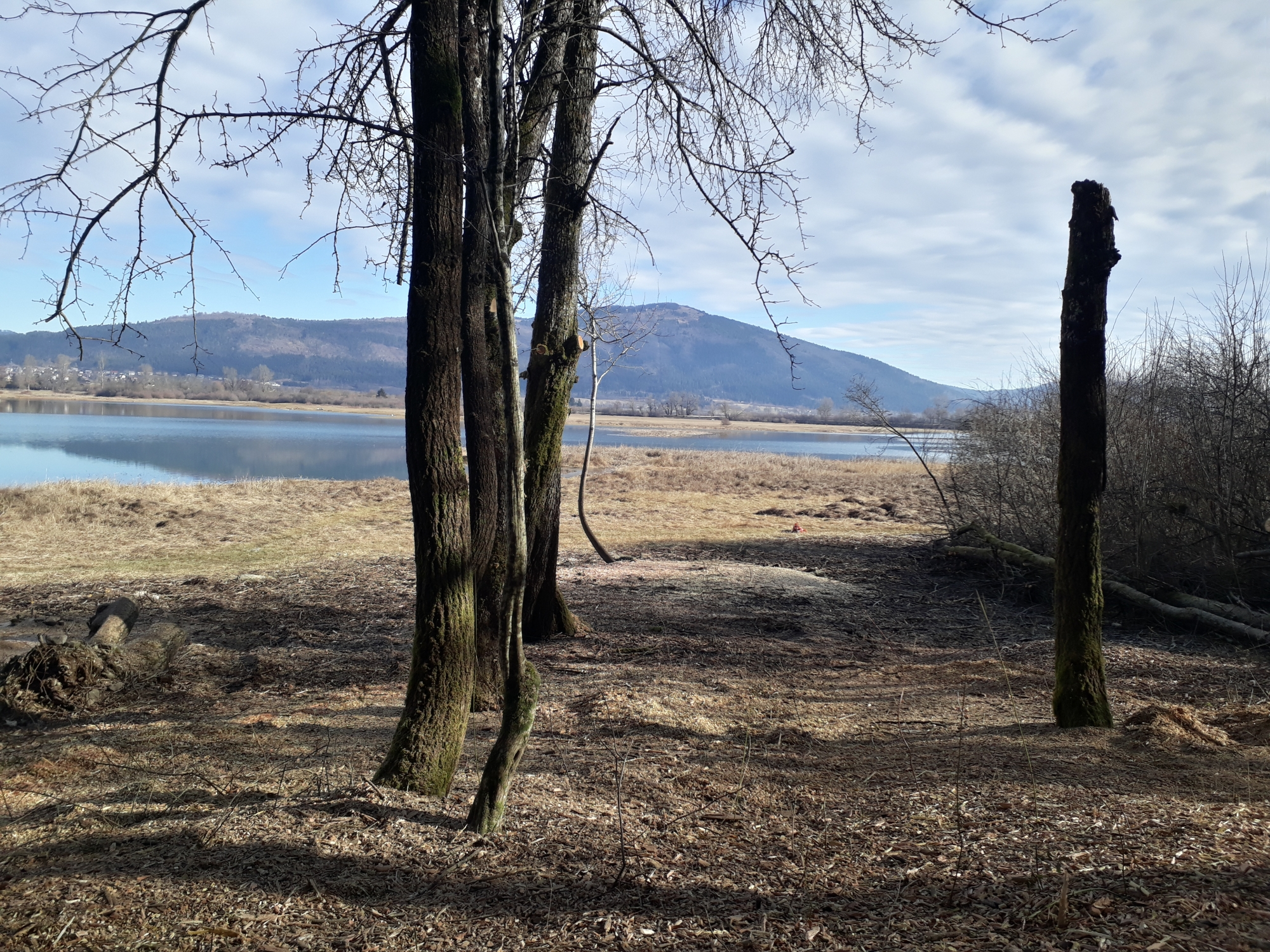 Spet odprt pogled na jezero in Slivnico