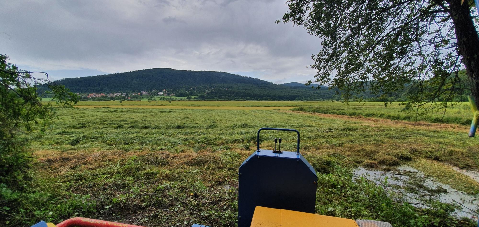 Odstranjevanje grmovja in zarasti v Lazah pri Gorenjem Jezeru