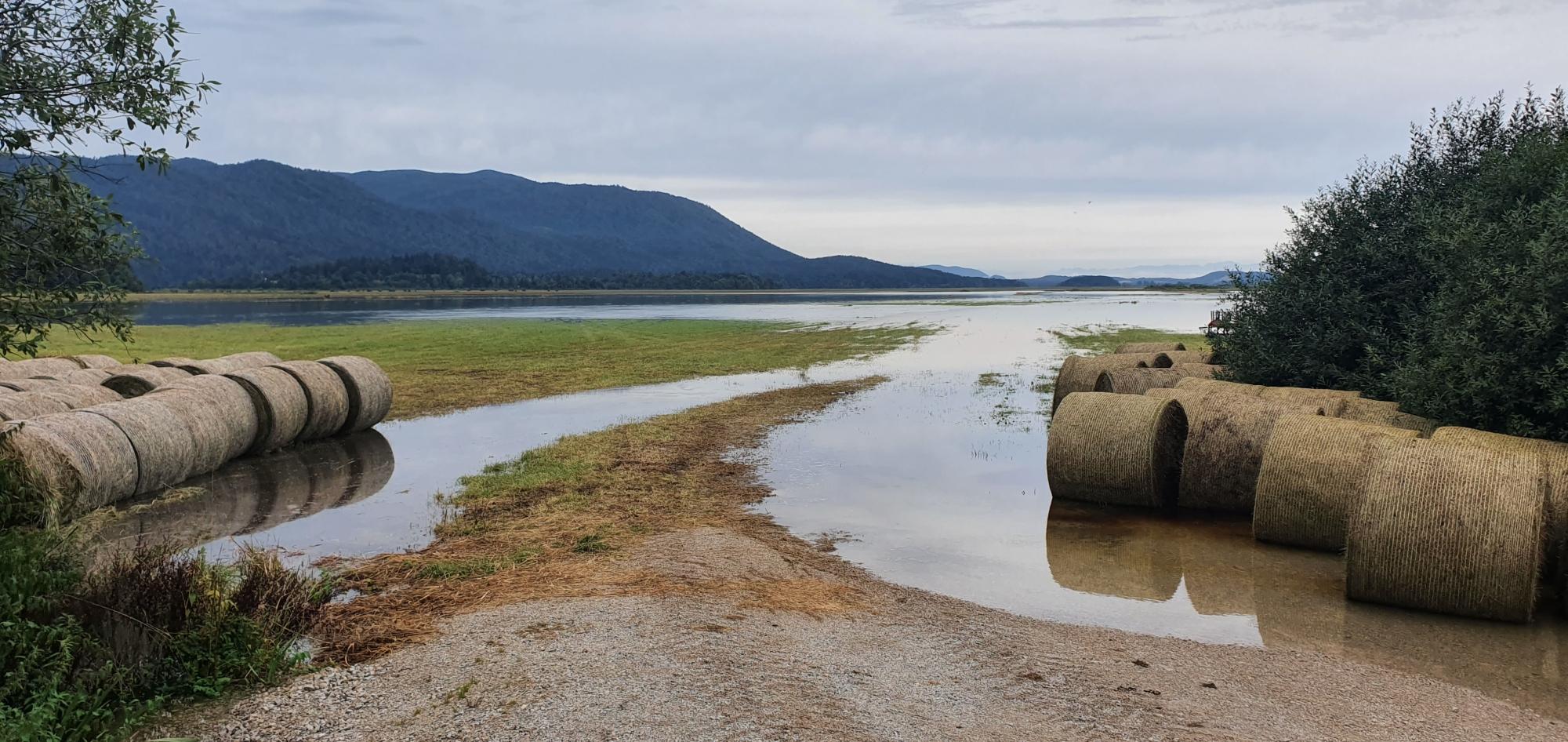 Bale sena je zalila voda. Foto Izak Hribar Meden