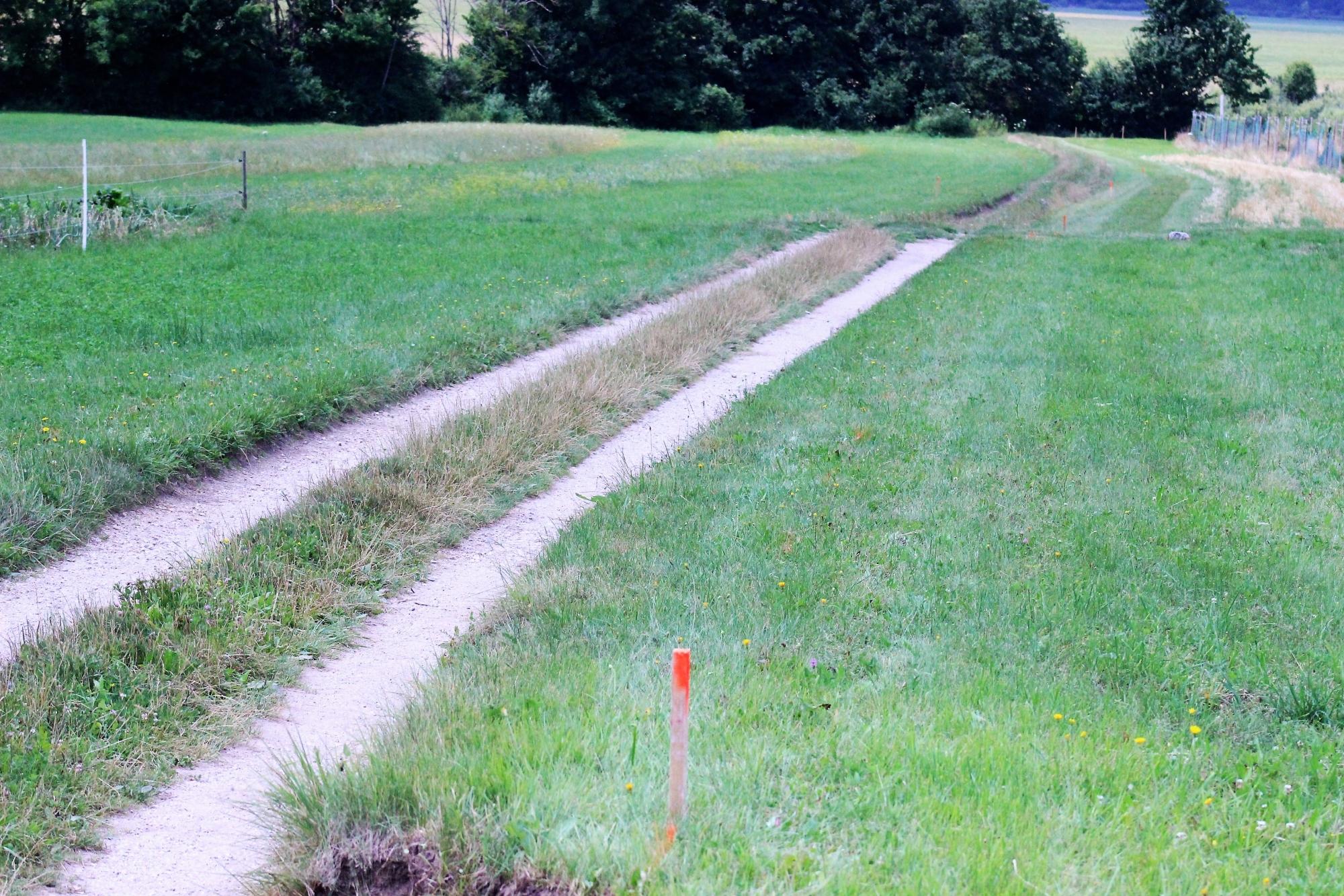 Pot, ki vodi do Belega Brega ob vodotoku STrženu