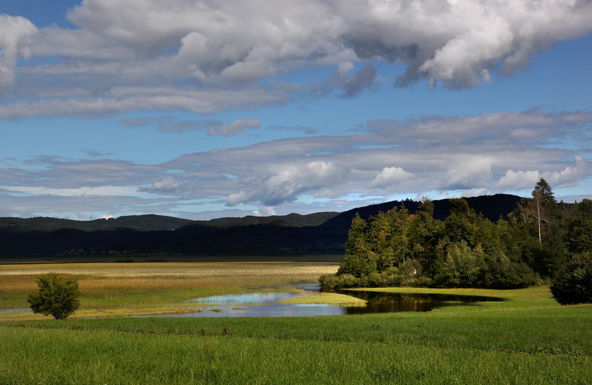 Nikoli ne vemo, katkšen obraz bo pokazalo jezero. Foto Izak Hribar Meden