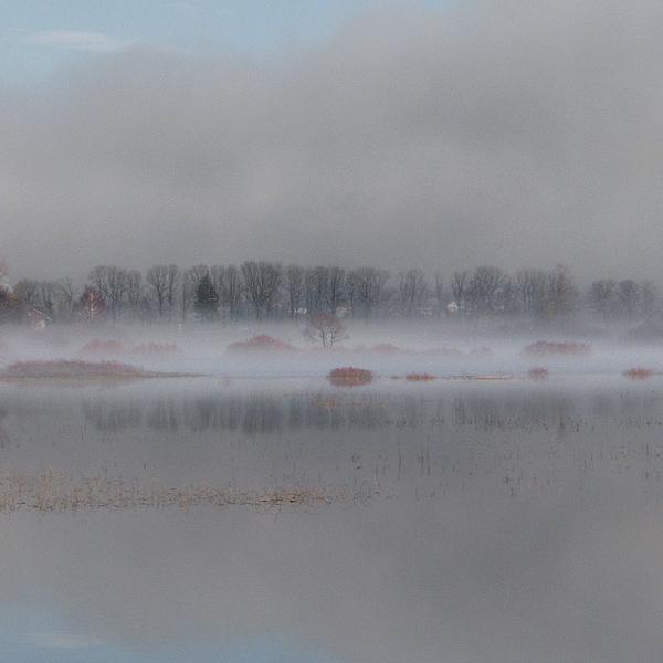 Cerkniško jezero v času lanskega popisa je bilo zaledenelo, zato so našteli le nekaj sto vodnih ptic