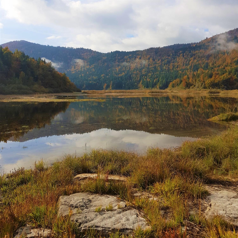 Trasa polmaratona teče tudi mimo enega najlepših delov Cerkniškega jezera, Zadnjega kraja